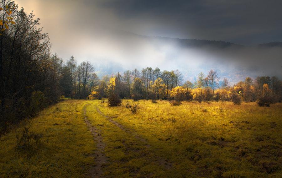 Landscape, автор — Mevludin Sejmenovic на 500px.com