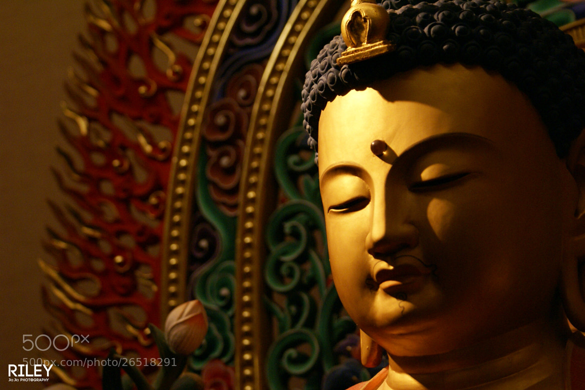 Photograph Buddha by riley jj on 500px