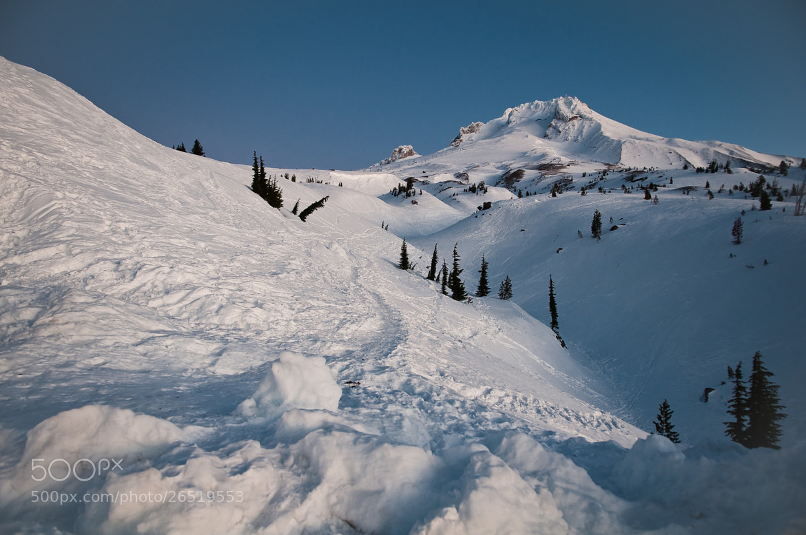 Photograph Timberline in the morning by Karl Johnson on 500px