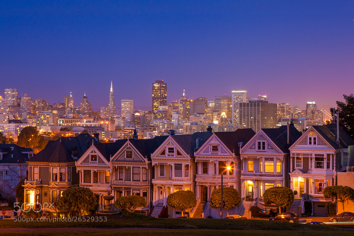 Photograph Painted Ladies Golden Hour by Guillaume Larrieu on 500px