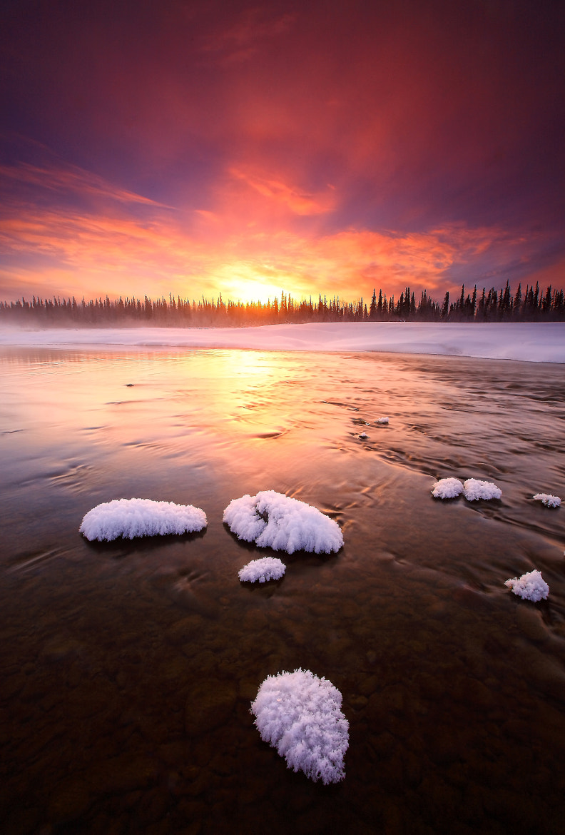 Photograph Wilderness Light by Ron Perkins on 500px