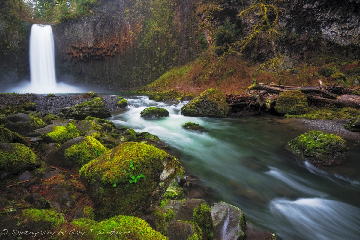Photograph Abiqua Falls, Oregon by Gary Weathers on 500px