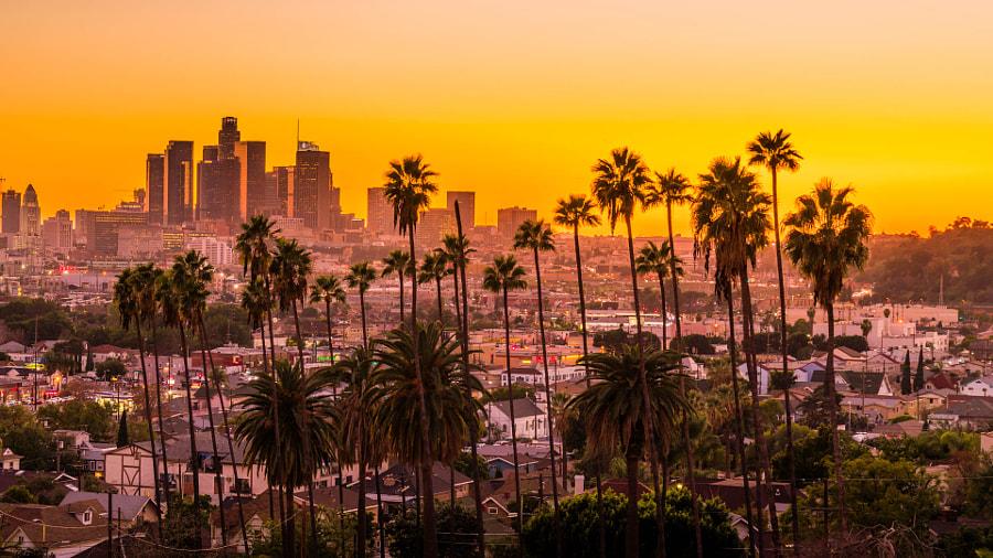 Downtown LA by Serge Ramelli on 500px.com