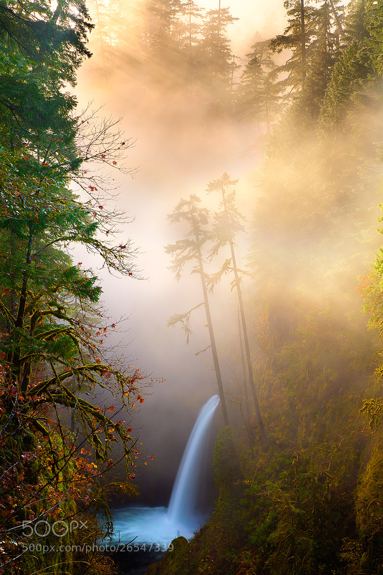 Photograph Misty Metlako by Jordan Ek on 500px