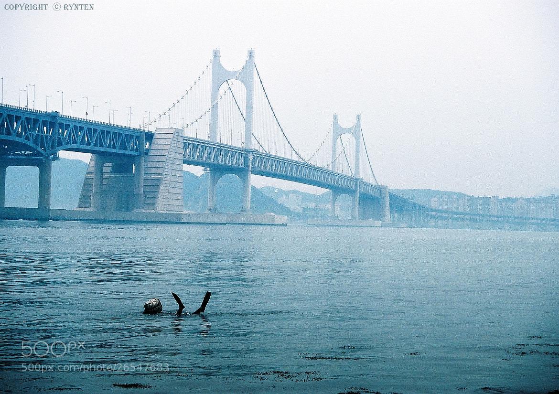 Photograph Diamond Bridge With Woman Diver by RYNTEN  on 500px
