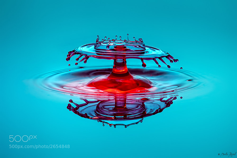 Photograph Basic drop by Markus Reugels on 500px