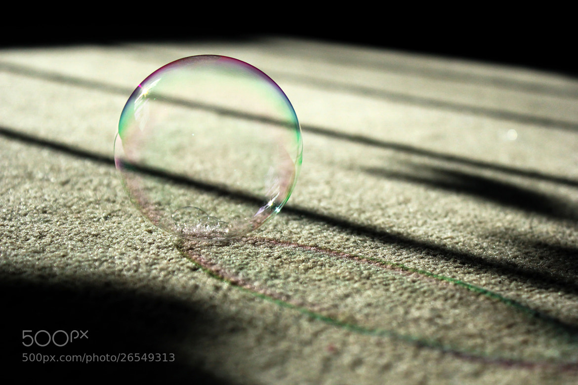 Photograph Bubble by SFA Photographer on 500px
