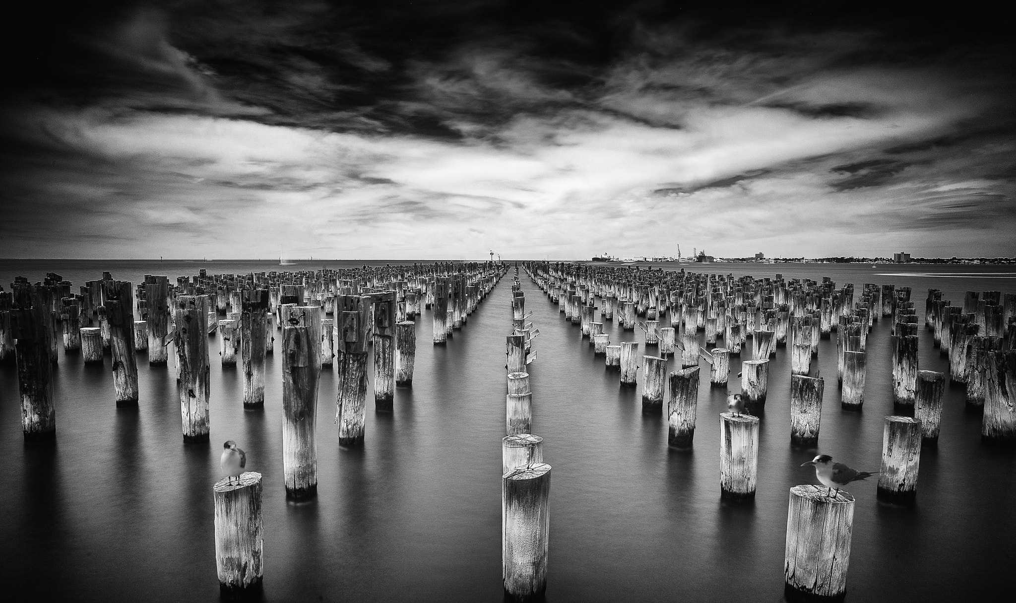 Photograph Princes Pier by Margaret Morgan on 500px