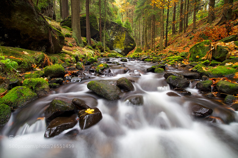 Photograph Autumn Creek by Martin Rak on 500px
