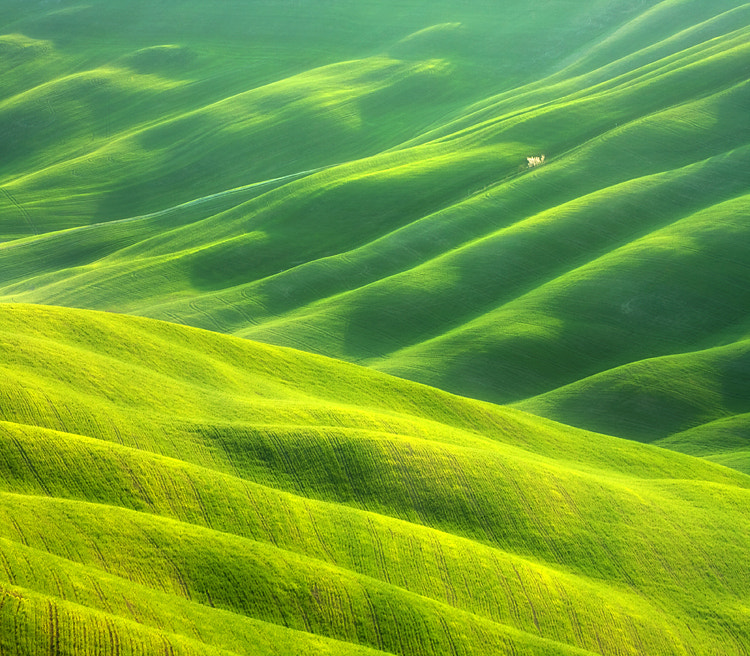Photograph Waves on waves by Marcin Sobas on 500px