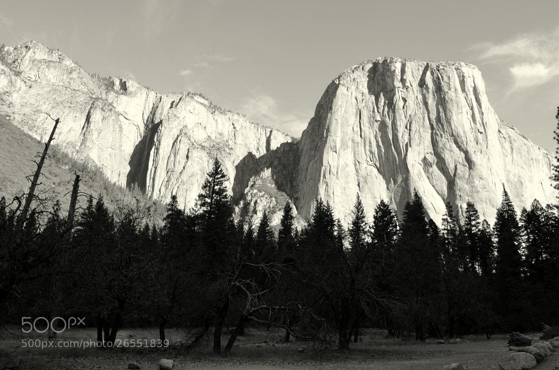 Photograph Yosemite, CA by Senthil Balakrishnan on 500px