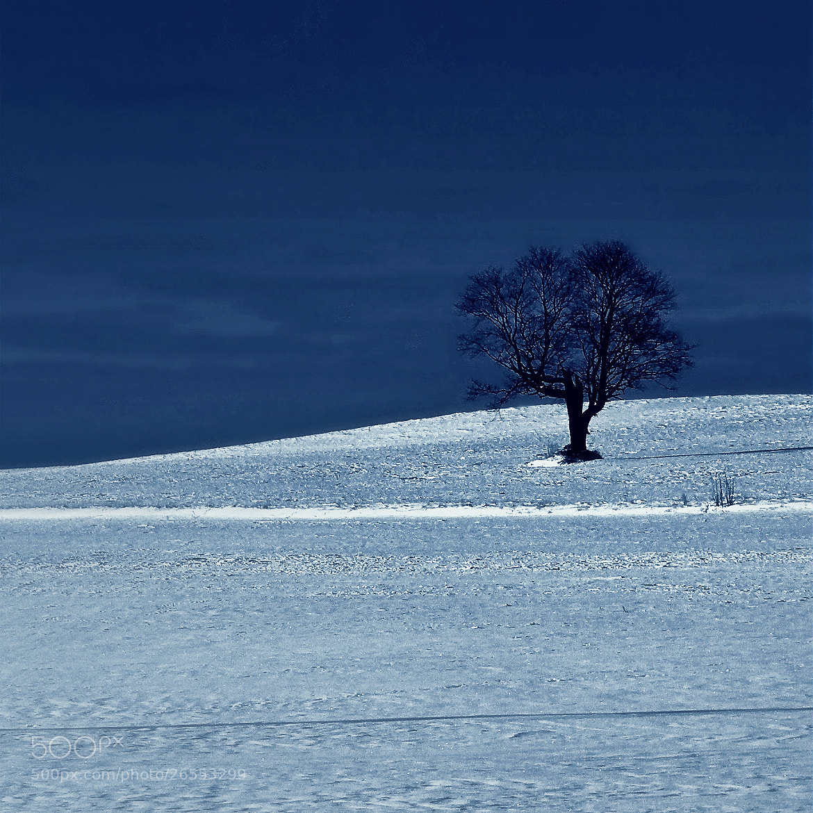 Photograph Solitude by **  REgiNA  **  on 500px