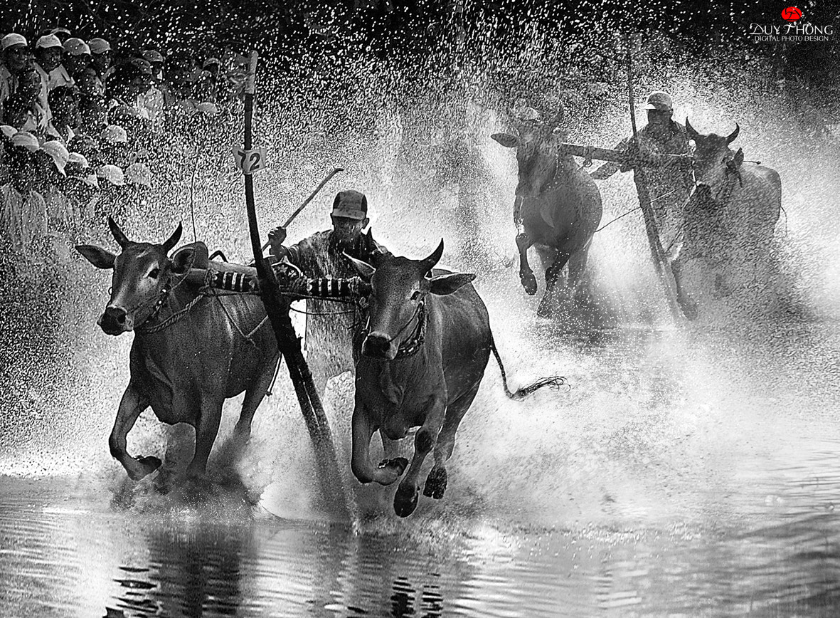 Photograph ACCELERATE by Duy Thong Vu on 500px
