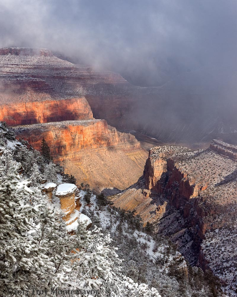 Photograph Morning Snowstorm, Grand Canyon National Park by Troy Montemayor on 500px