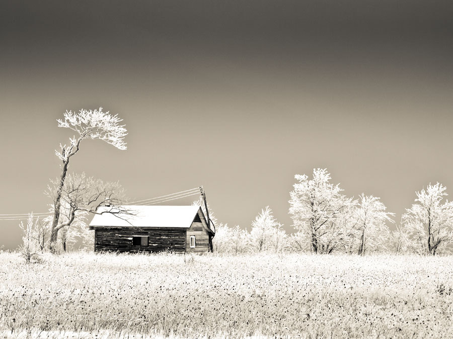 Photograph Vanilla Frosting by Peter Baumgarten on 500px