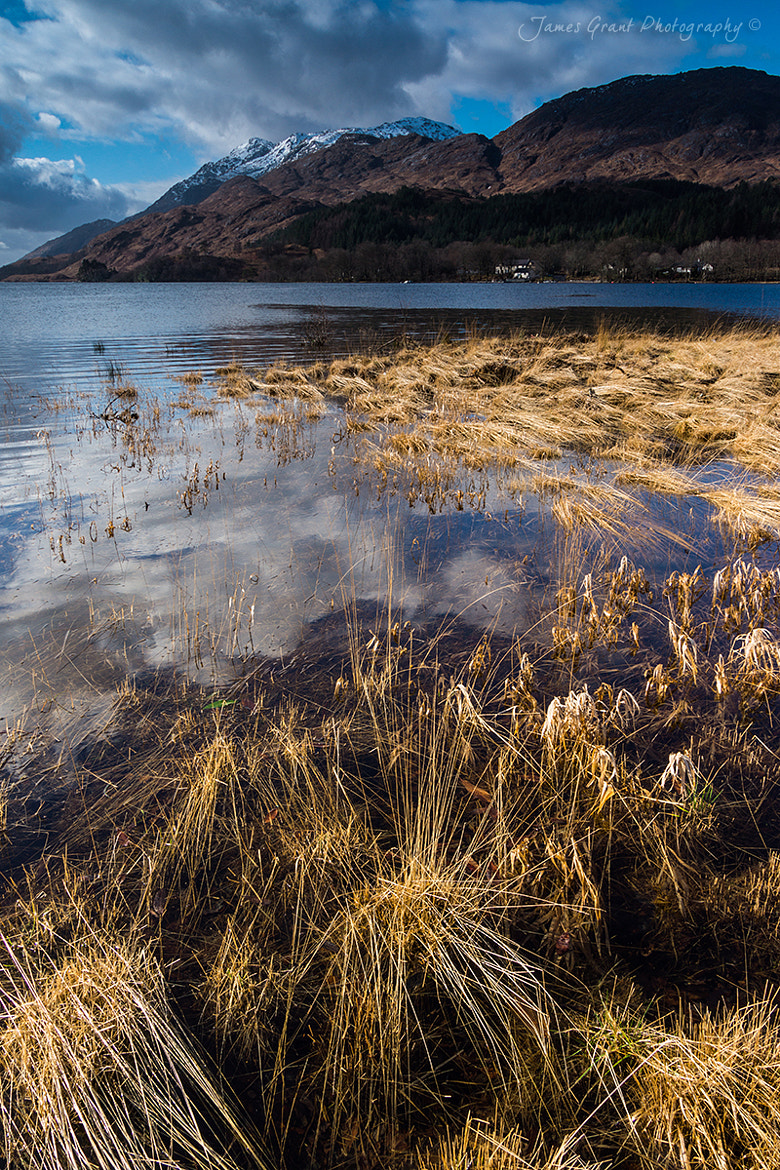 Photograph Glen Sheil by James Grant on 500px