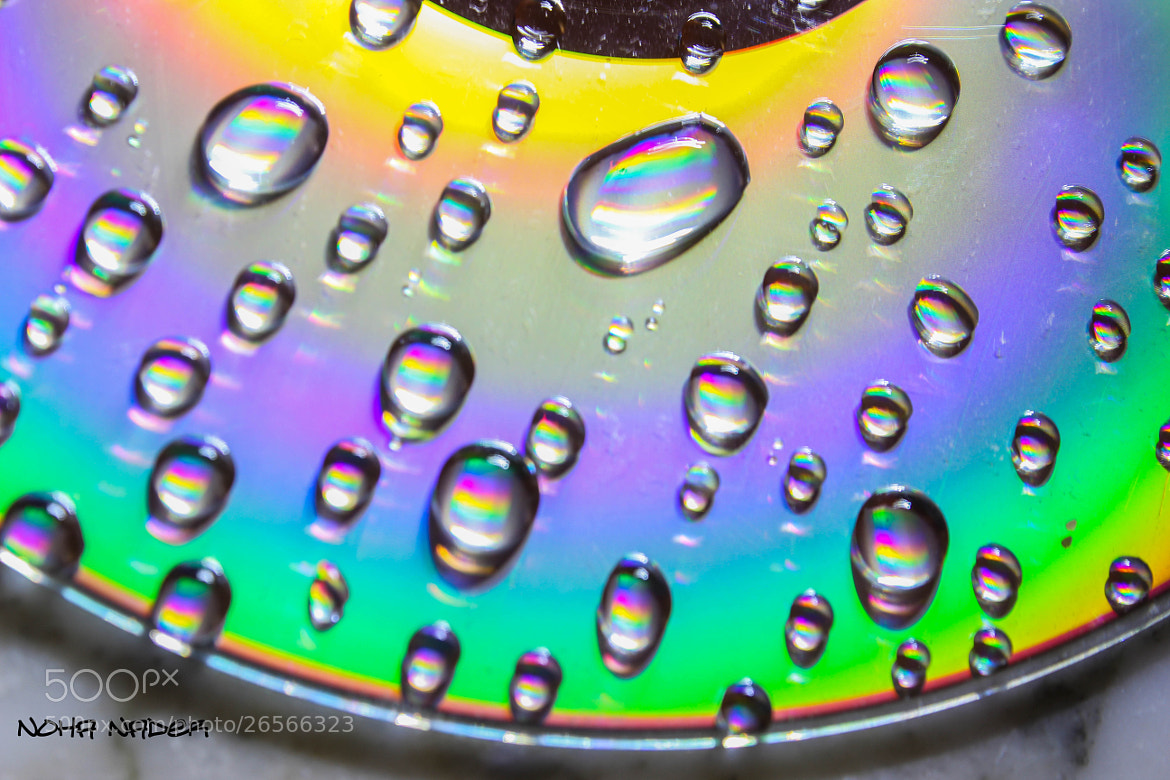 Photograph colors by Noha Nader on 500px