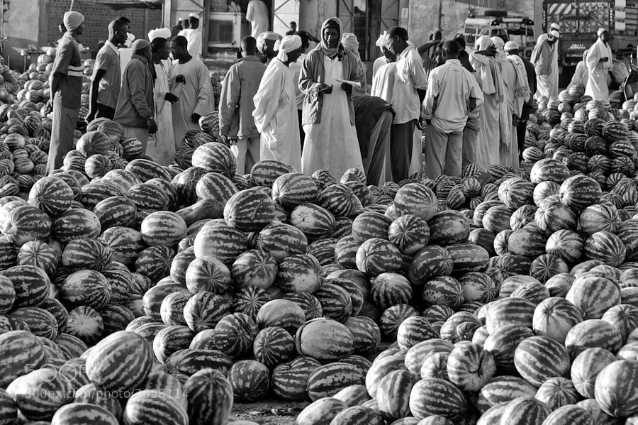 Watermelons, Morning market at Gedaref, Sudan