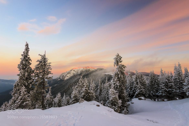 Photograph Winter sunrise landscape by Janos Gaspar on 500px