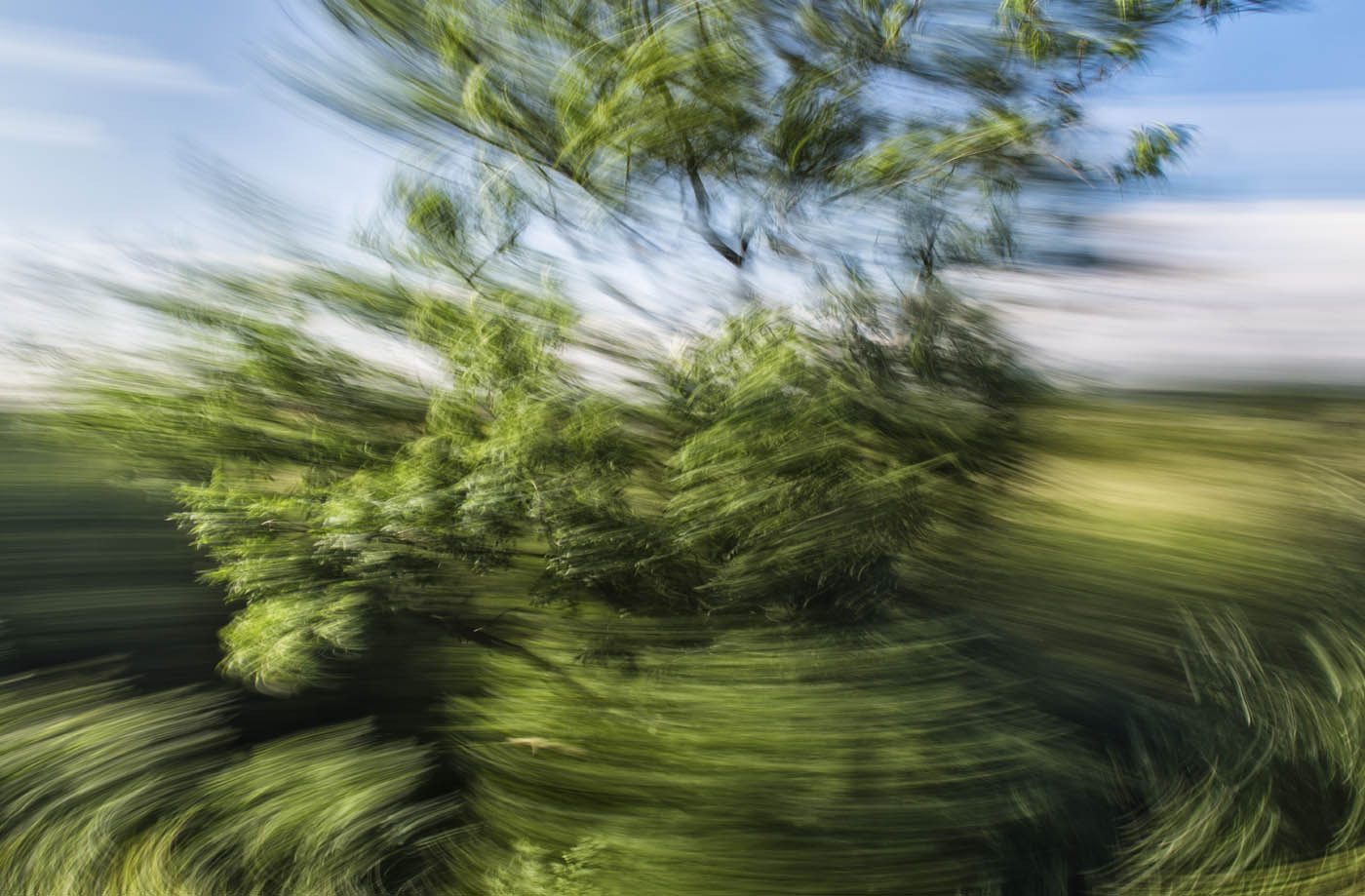 Photograph Spinning nature by daniel vojtech on 500px