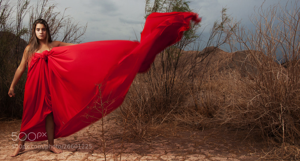 Photograph Angry red by Carina Coca on 500px