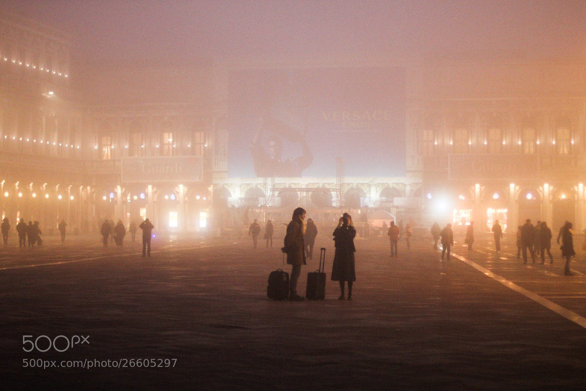 Photograph Mist by Fin and Claire on 500px