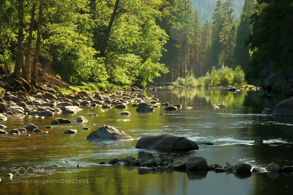 Photograph Merced River Reflections by Larry Herscovitch on 500px