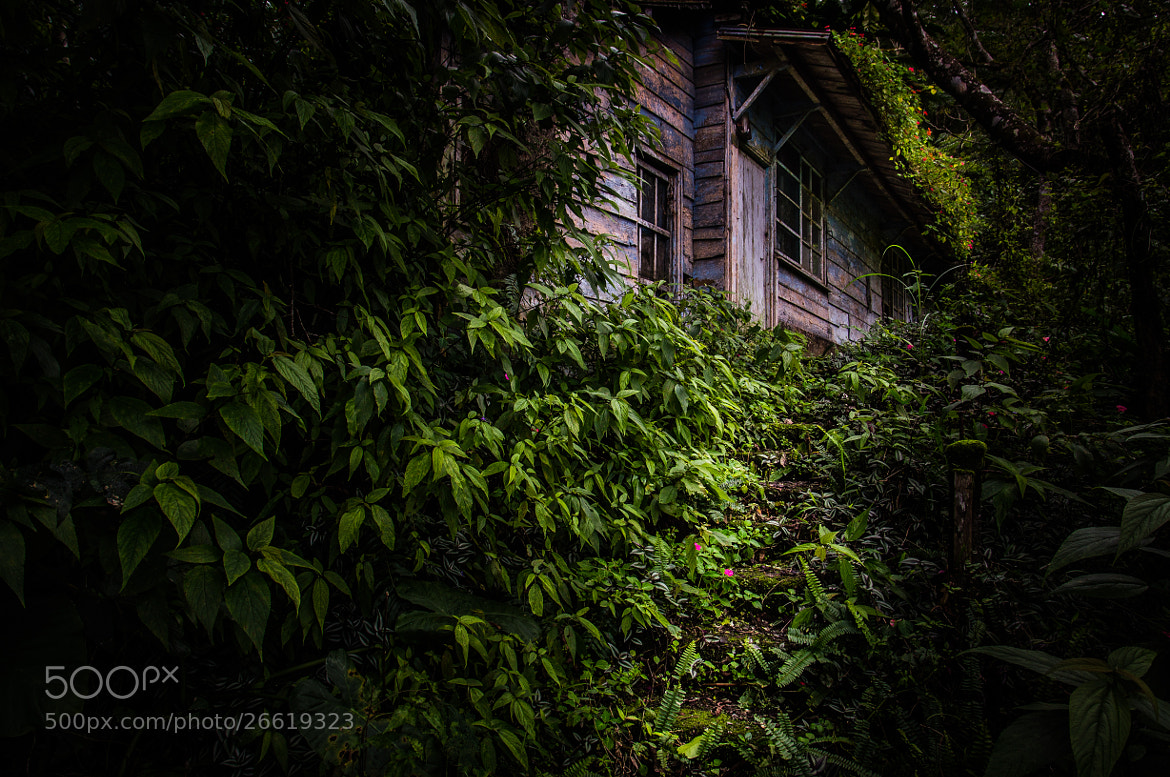 Photograph The Lost Cabin (Color) by Jonathan Bengtsson on 500px