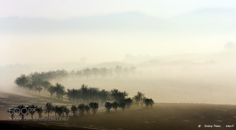 Photograph Lost way by Ondrej Pakan on 500px