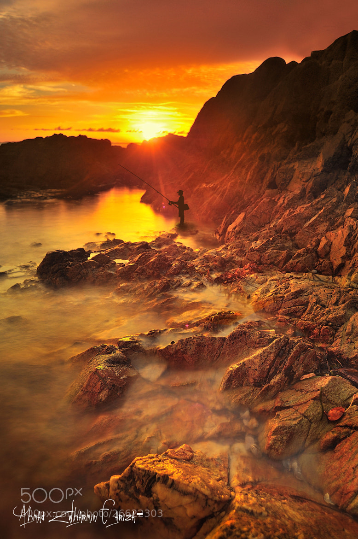 Photograph ::. Fisher Yellow .:: by Ahmad Zulharmin Fariza on 500px