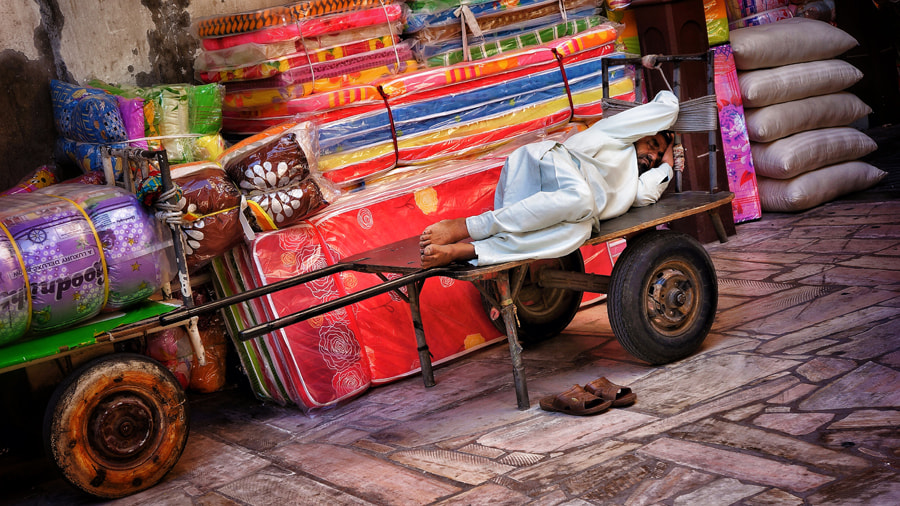 Photograph Nap Time by Leon  on 500px