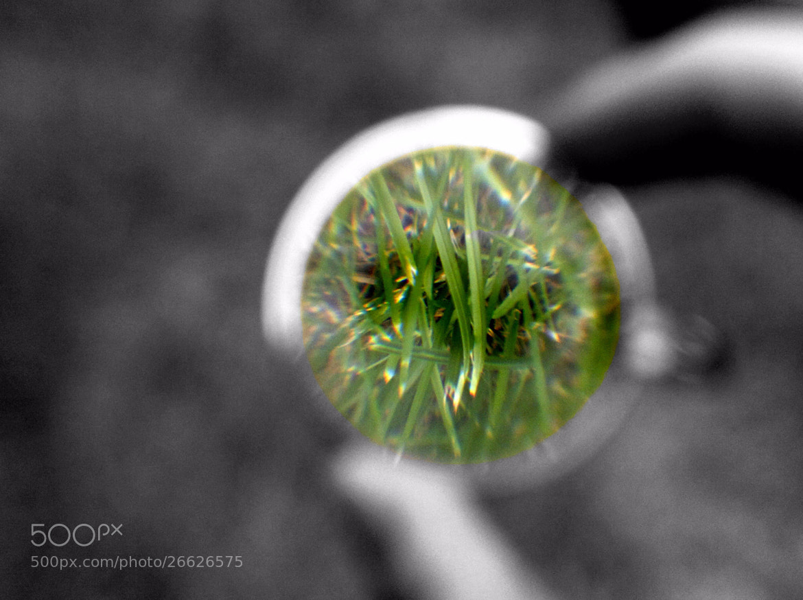 Photograph Focus in the magnifying glass by Boris Tuchko on 500px