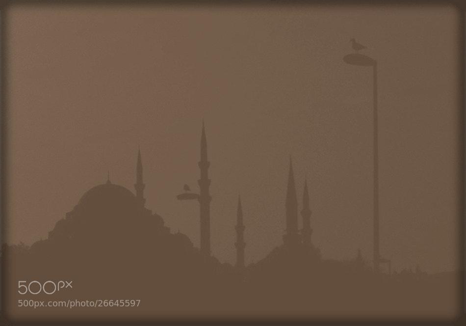 Photograph Süleymaniye by Ömer Osmanoğlu on 500px