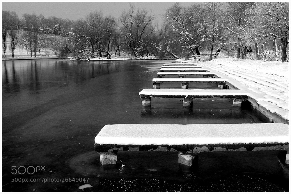 Photograph Last snow by Stefan Andronache on 500px