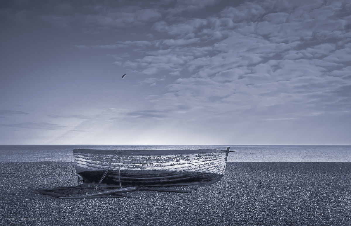 Photograph Boat on the beach by Ann Thomstad on 500px