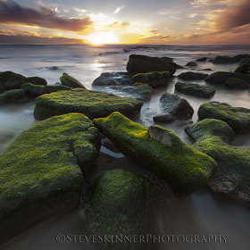 Final Light - Dog Beach by Steve Skinner (beachbum)) on 500px.com