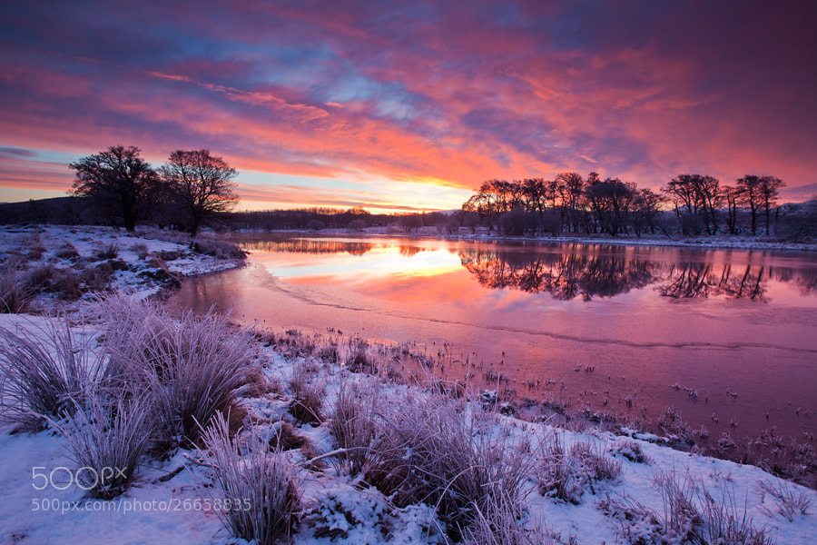 Photograph River Spey sunrise by Mark Hamblin on 500px
