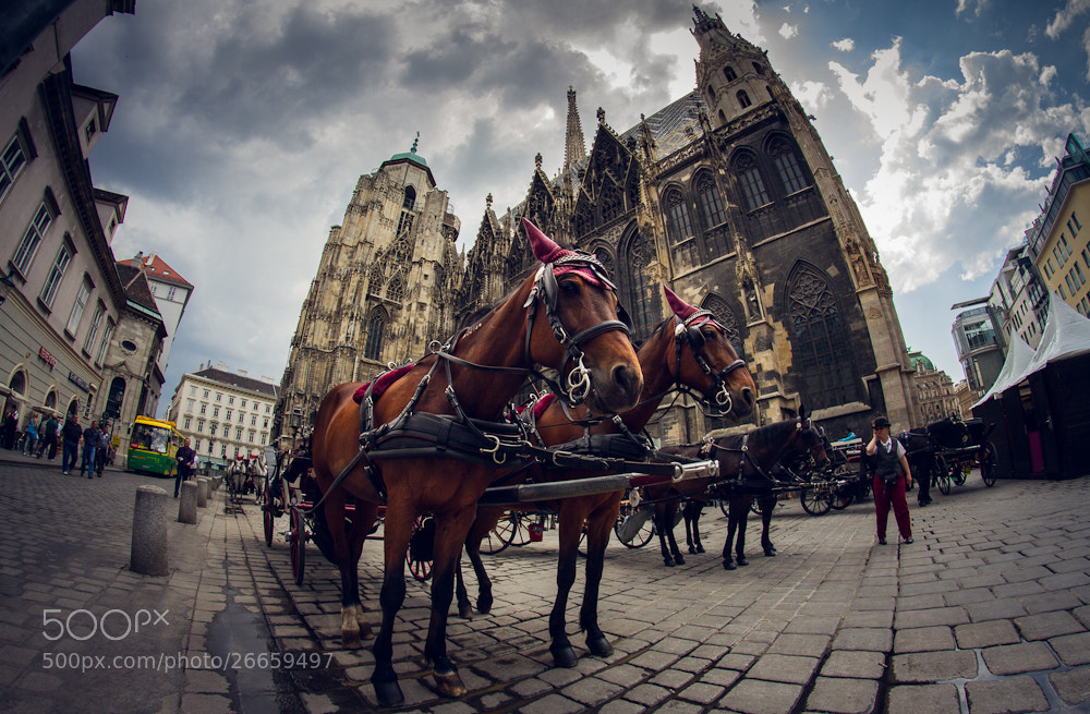 Photograph Vienna's pricy Taxis by Valentin Kouba on 500px