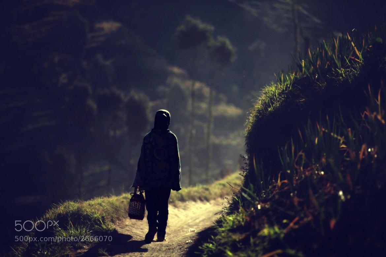 Photograph light and dark by Ayie  Permata Sari on 500px