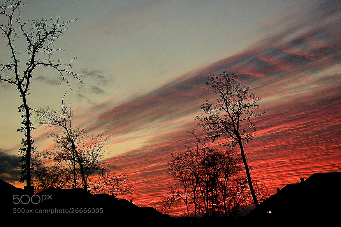 Photograph February Sunset by Pratik  on 500px
