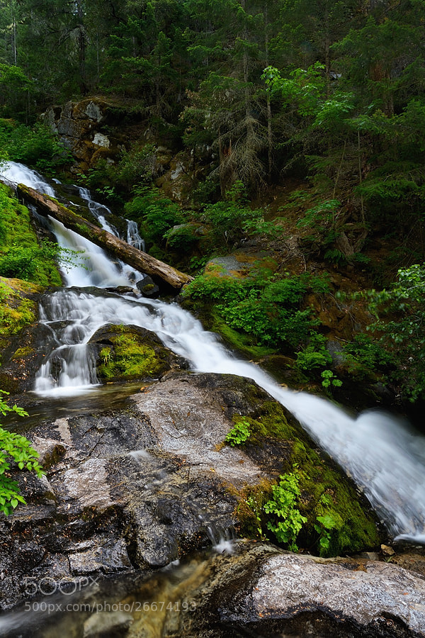 Photograph Whiskeytown Falls (upper) by Jimmy De Taeye on 500px