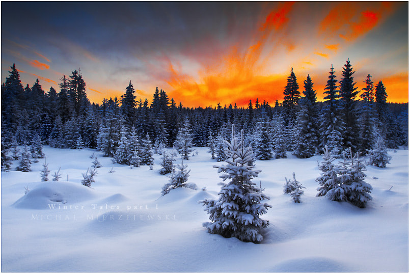 Photograph Winter Tales part 1 by Michał Mierzejewski on 500px