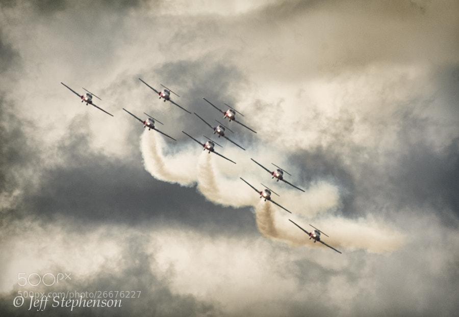 Photograph Snowbirds #2 by Jeff Stephenson on 500px