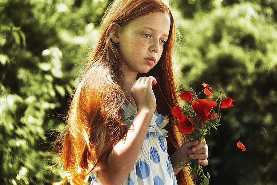 Poppies, автор — Alexandra Bochkareva на 500px.com