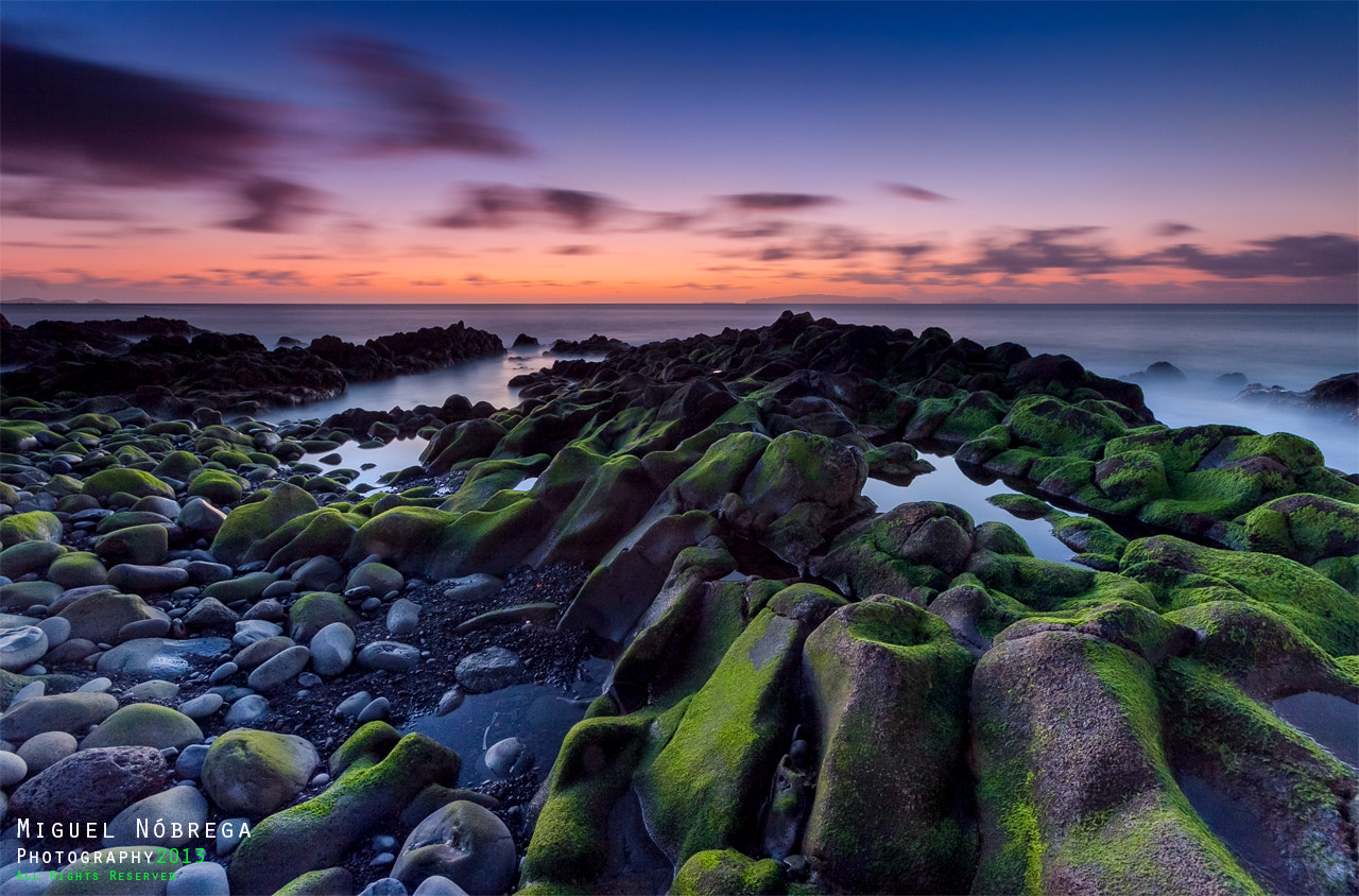 Photograph Green Rocks by Miguel Nóbrega on 500px