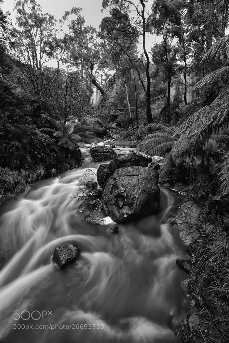 Photograph After the rains by Stephen Lamb on 500px