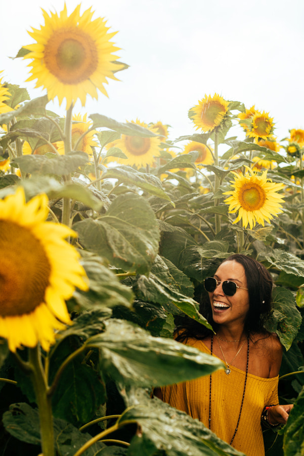 Tournesol by Anthony Rayburn on 500px.com
