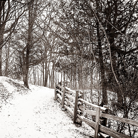 Snowy Trail by Joseph Qiu (JosephQiu)) on 500px.com