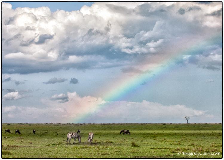 Rainbow Over Africa
