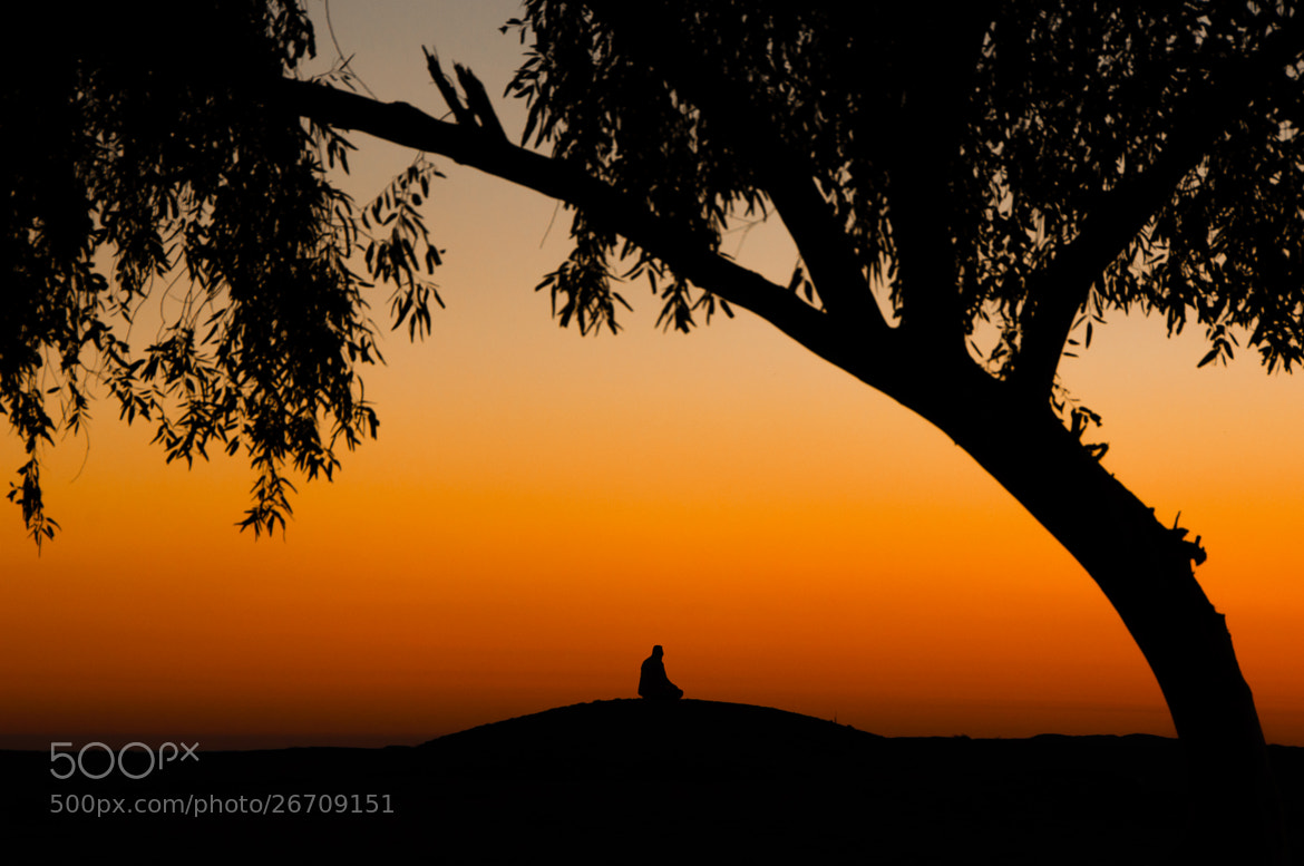 Photograph Alone at Sunset by Hosein Esmaeelbegi on 500px
